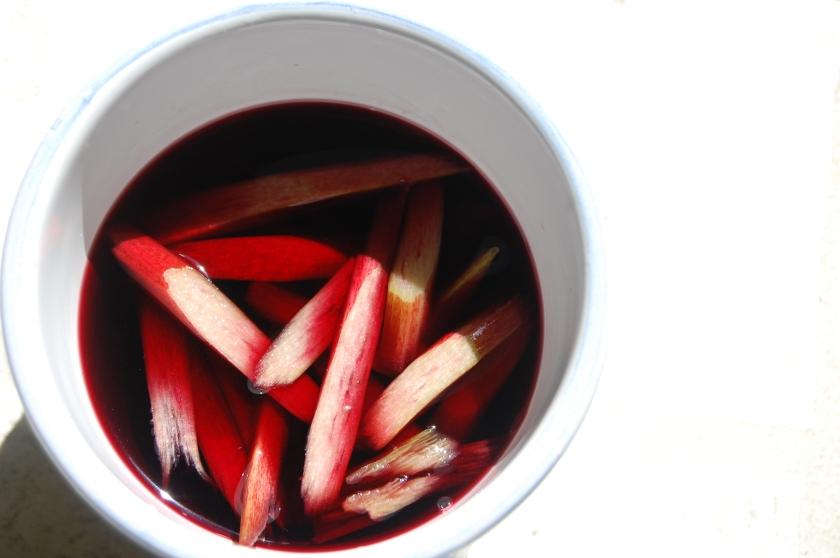 Rhubarb in Red Wine